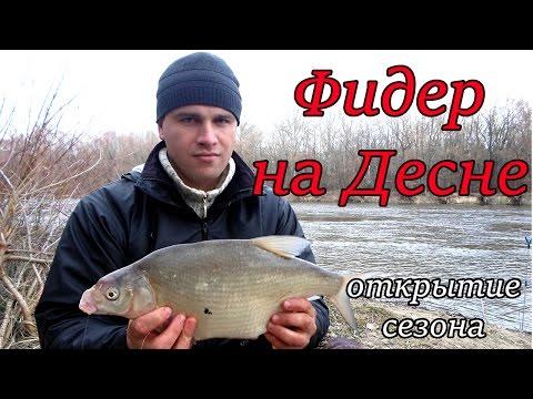 ловля леща на реке десна видео