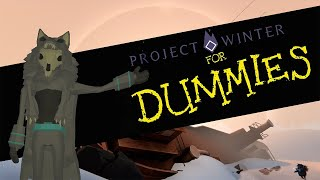 Project Winter for dummies [Complete starter guide] [+1k hours]