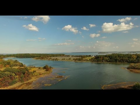 Aerial View of Autumn at Pelham Bay Park, NY.  in 4K P.1