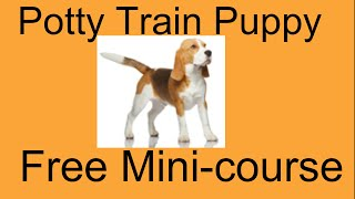 **ASAP** How To Potty Train a Big Puppy - Free Mini Course on How To Potty Train a Big Puppy