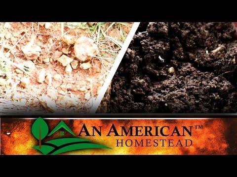 Bad Dirt - Good Dirt