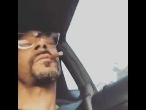 Snoop dogg listening to corridos (sangre de maldito)