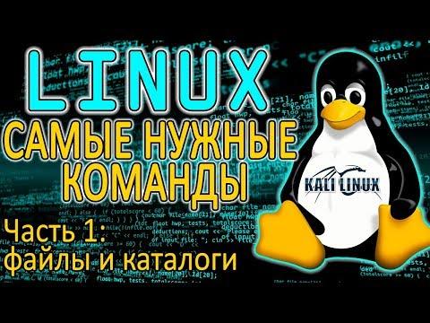 Основы Linux. Работа с файлами и каталогами