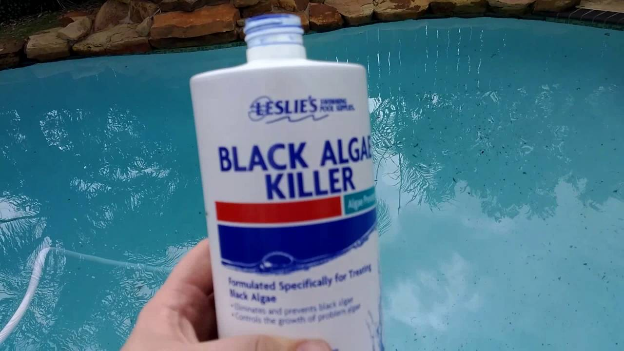 Leslie 39 s black algae killer review mommy thoughts youtube - Black algae removal swimming pool ...
