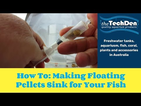 How To:  Making Floating Pellets Sink For Your Fish
