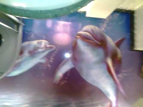 Фотопечать в ванной - дельфины