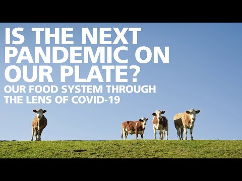 """""""Is the Next Pandemic on our Plate?"""" The Food System through the lens of COVID-19."""