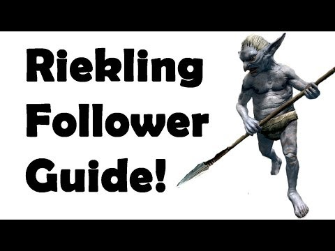 Skyrim how to get the best pet follower best quest series