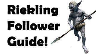 Skyrim: How to get the Best Pet Follower! (Best Quest Series).