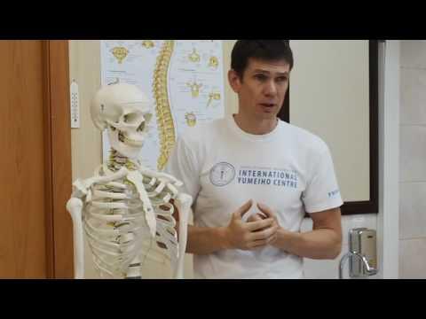 Лечение позвоночника в Москве - клиника Коновалова по