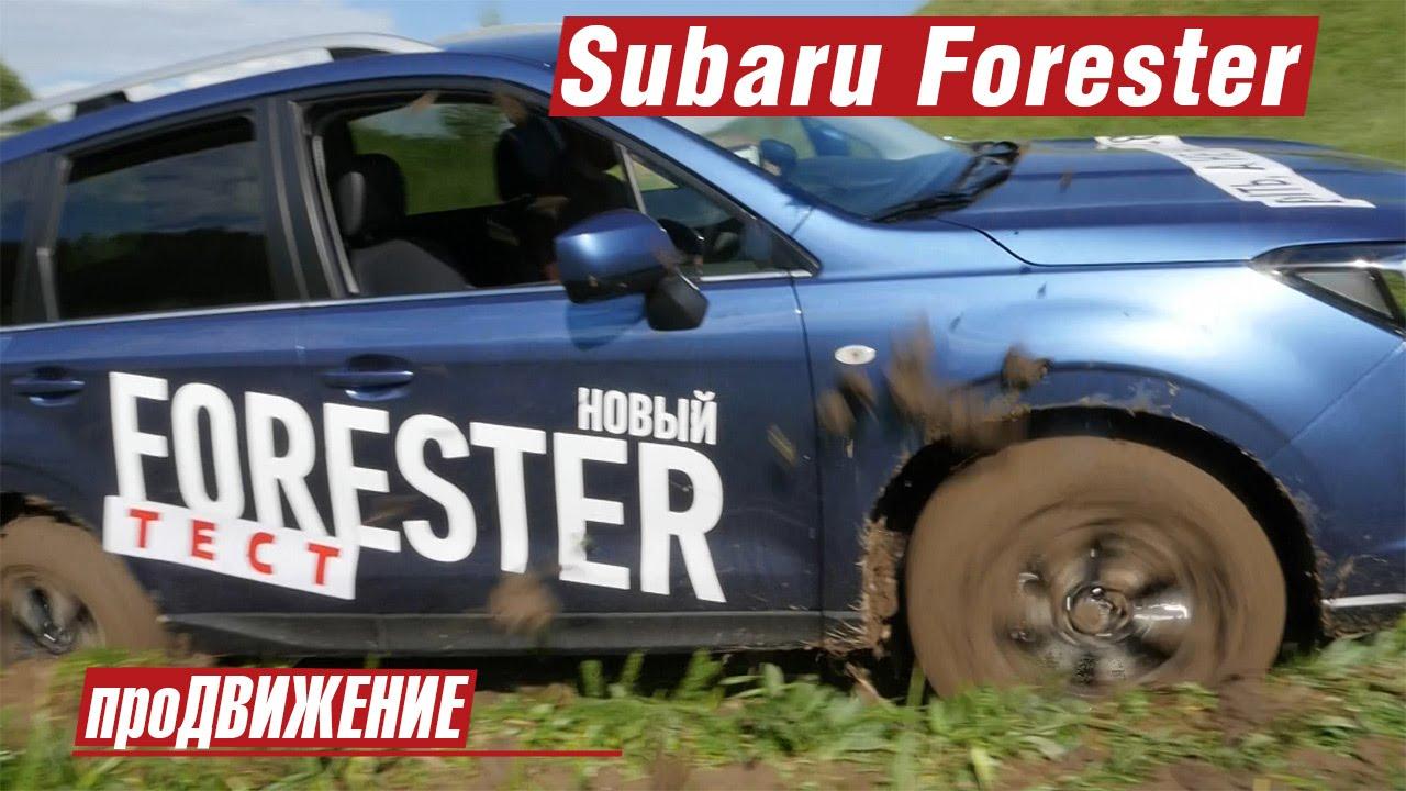 Нет, это не кроссовер! Тест-драйв нового Subaru Forester 2016 про.Движение Субару