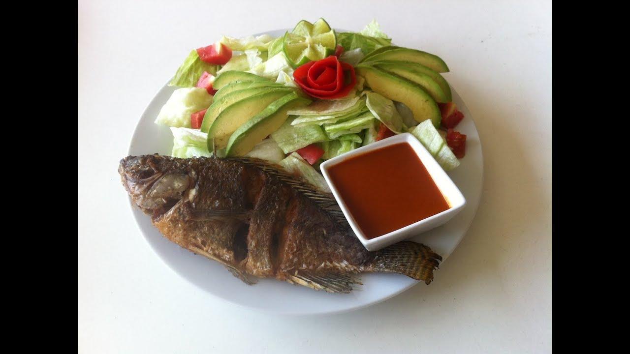 Que es el tilapia fish