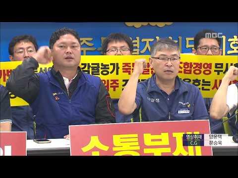 감귤농협 노조, 인사전횡 항의 경고파업 예고 이소현