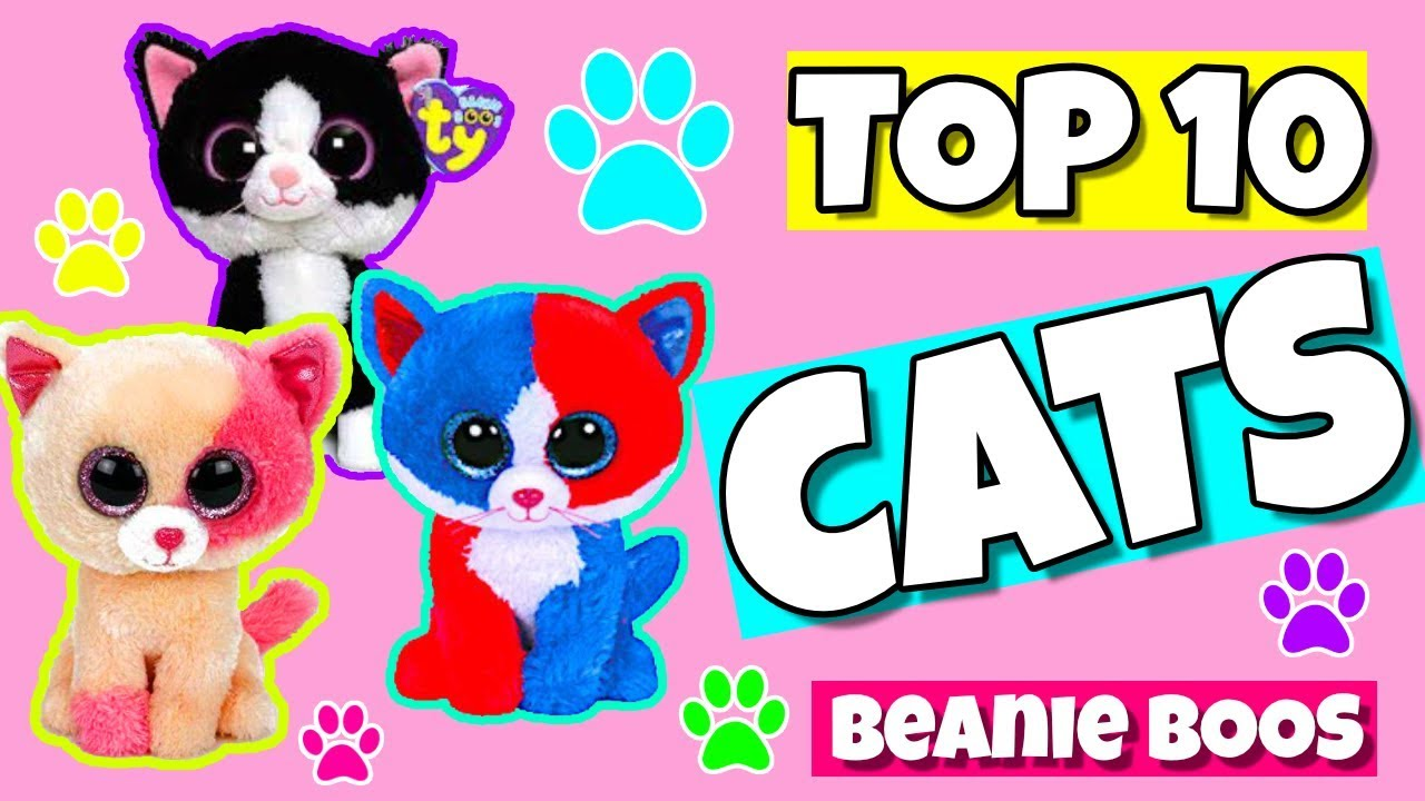 008503f61ce Top 10 beanie boo cats - YouTube