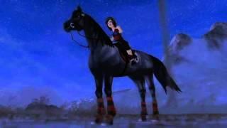 {SSO} ~Mes chevaux~ ♥