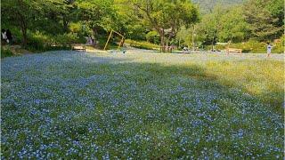 영원한 사랑 - 이종상, 평강식물원 - 포천