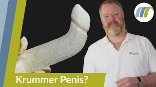 Penis knubbel Eine Art