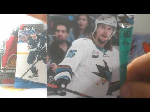 Homemade hockey  card pack opening (NHL All Star Series
