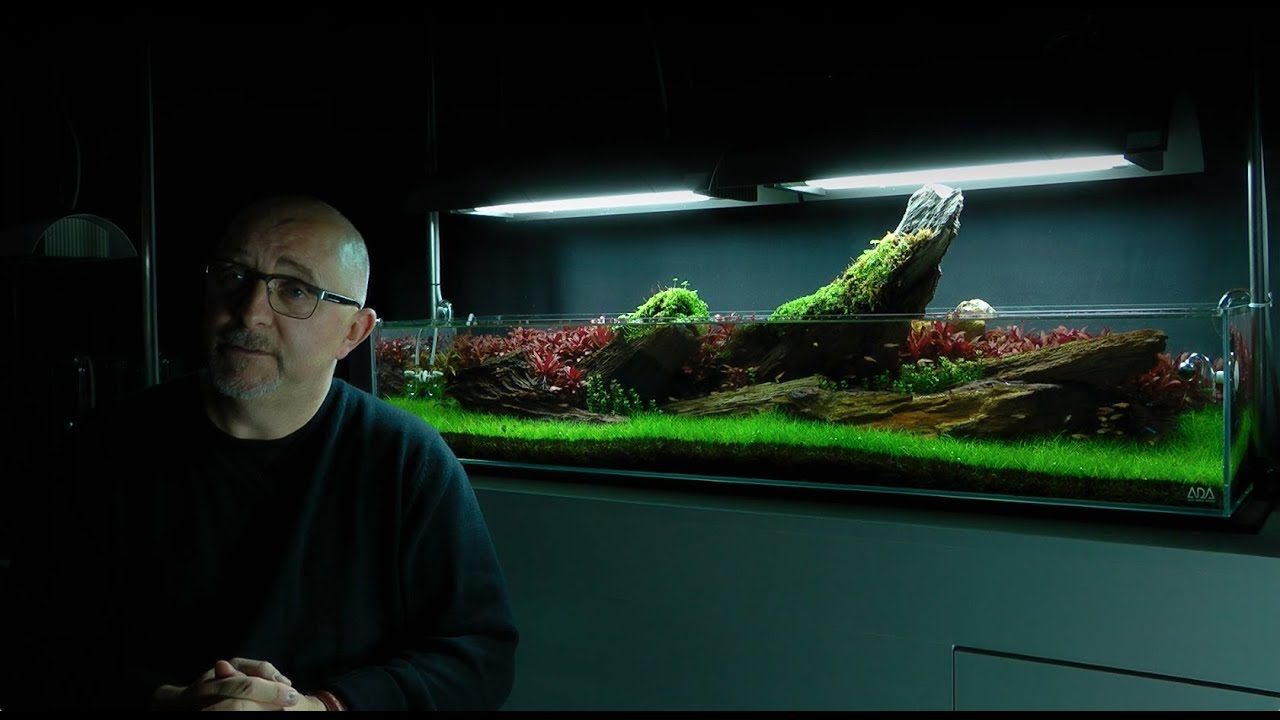 James Findley Interview on Crimson Sky Aquascape - YouTube