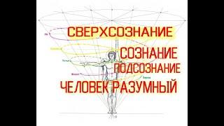 Человек Разумный: Сознание-ПодСознание-СверхСознание / Виктор Максименков