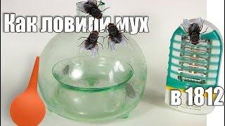 Уничтожение насекомых. Ловушка для мух и комаров (октябрь 2017)
