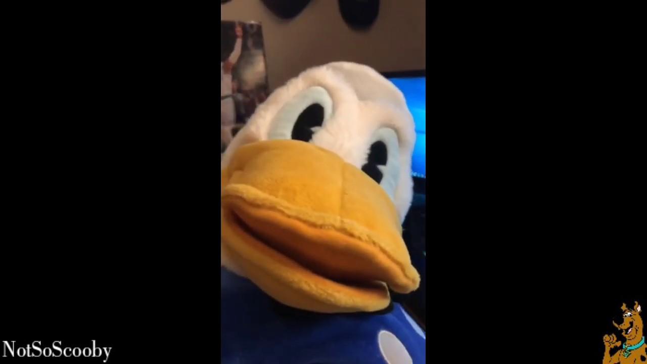 Donald Duck Having Fun By Likeabossnt Meme Center