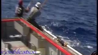 Tuna fishing 85 Port Lincoln 150 lbs plus fish biggest seen in my years fishing   YouTube