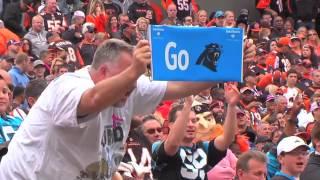 Bengals tie Panthers 37-37