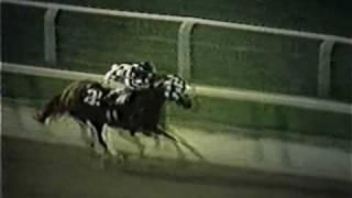 SECRETARIAT - 1973 Belmont Stakes (Alternate Footage)