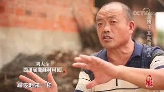 [中华优秀传统文化]携手互助渡难关  CCTV中文国际