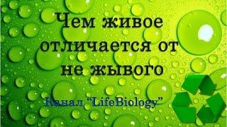 Строение и свойство живых организмов. Чем живое отличается от не жывого