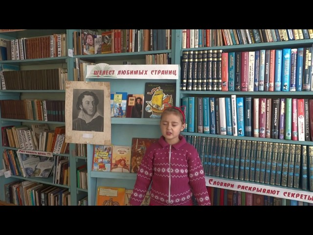 Изображение предпросмотра прочтения – СофьяЗинченко читает произведение «Евгений Онегин» А.С.Пушкина