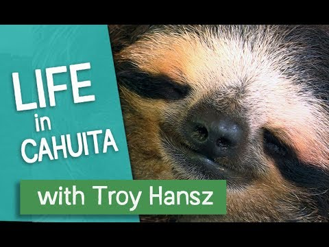 Life in Cahuita, Costa Rica with Troy Hansz
