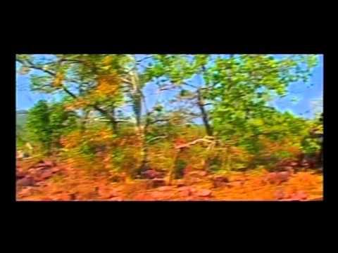 Chhattisgarhi Song - Ye Turi Ha - Mor Chaal Mastani - Manoj Sharmila - Anupama Mishra