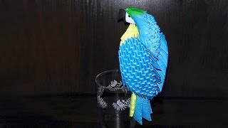 Модульное оригами сине-желтый попугай ара (видео схема сборки)
