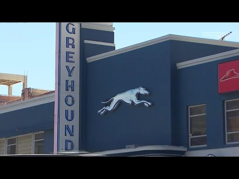 Greyhound bus passengers catch driver falling asleep behind the wheel