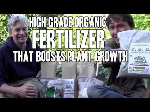 High Grade Fertilizer that Most Gardeners Forget: CBD Trace