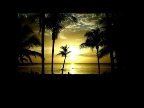 jamaica farewell - Harry Belafonte(cover)