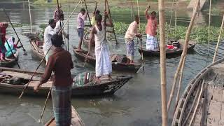 Amazing fish ctaching video    how to fishing with bamboo with rod