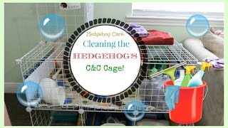 Hedgehog Care: Cleaning The Hedgehog's C&C Cage