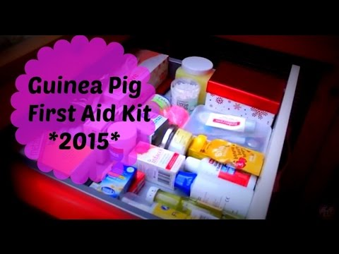 Guinea Pig First Aid Kit *2015*