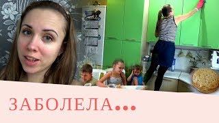 видео Кактусы жизни | Блог хулиганки