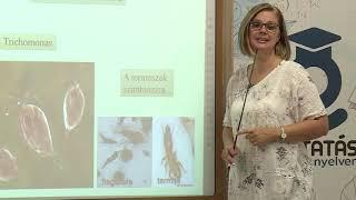 Paraziták, amelyek nem fogynak - A gyermeknek van pinworms 7 Paraziták, amelyek nem fogynak