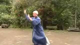 道功拳 太極拳 tai chi taiji taichiquan