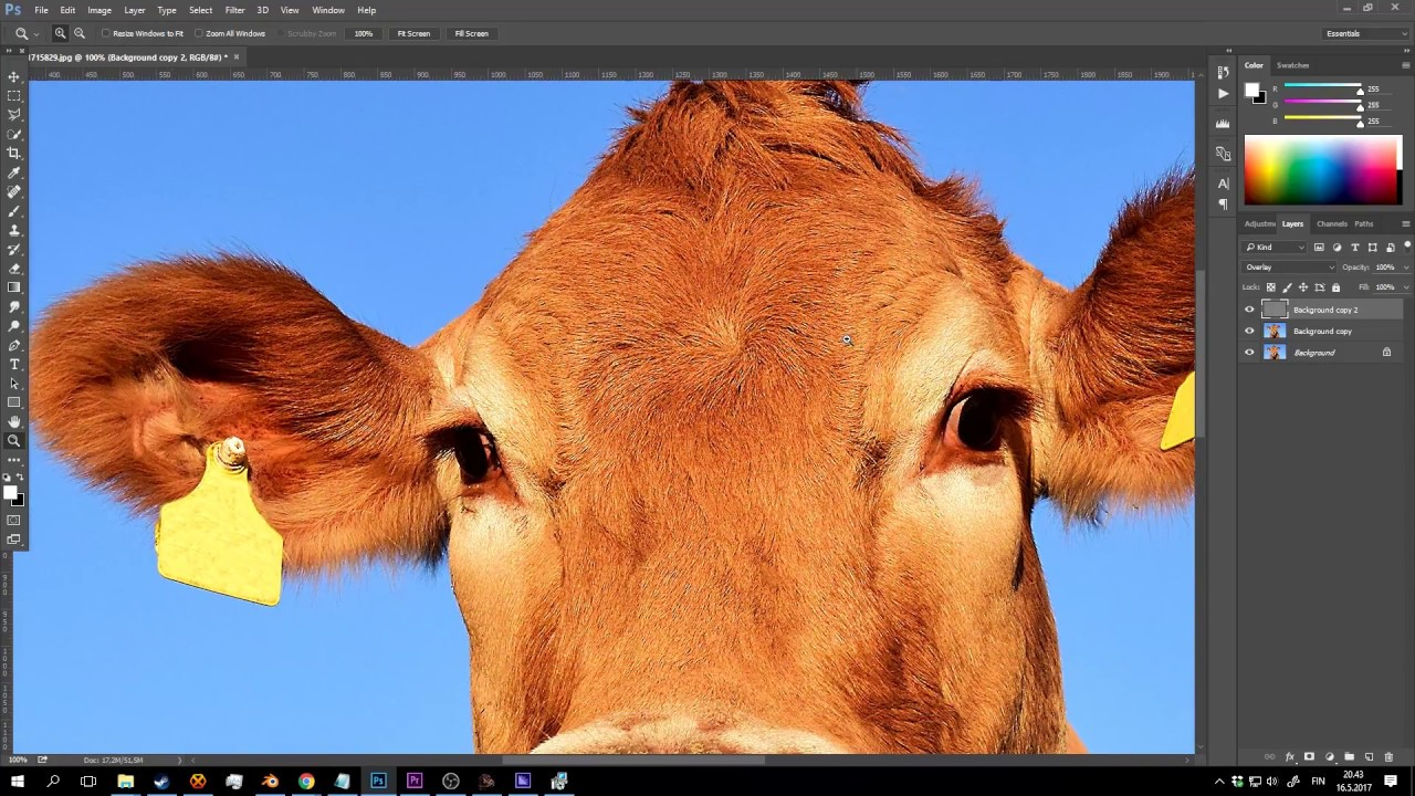 How to fix over sharpened images in Photoshop or Gimp