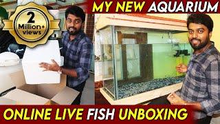 My New Aquarium Setup |  எனது …