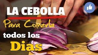 Luego De Que Sepas Esto Querrás Comer Cebolla Todos Los Días - ¡Las Maravillas De La Cebolla!