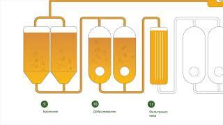 видео Линия производства пива. Оборудование для производства пива