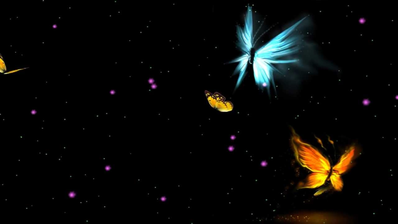 Fantastic Butterfly Animated Wallpaper Desktopanimated