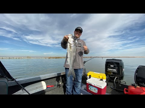 Delta Striper Fishing Near Antioch Pittsburg California